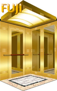 Golden Cabin Passenger Lift/ Elevator pictures & photos