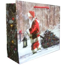 Gift Bag/ Christmas Paper Shopping Bags / Promotion Bag