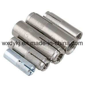 Stainless Steel Fastener Thread Wedge Anchor Bolt and Nut
