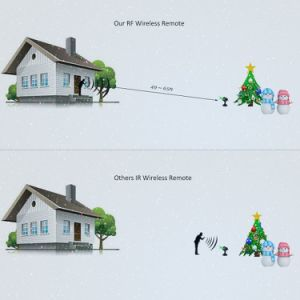 Mini Twinkling Laser Light/Outdoor Mini Laser Christmas Lights pictures & photos