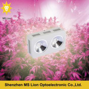 400W COB LED Grow Light Full Spectrum for Hydroponic and Greenhouse