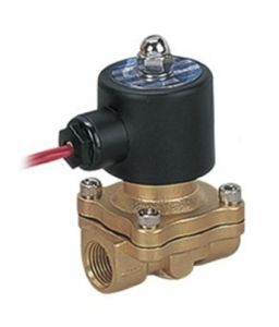 2W Series Brass Large Water Solenoid Valve pictures & photos