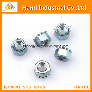 "Stainless Steel Top Quality Ss 316 1/2"" Toothed Nut pictures & photos"