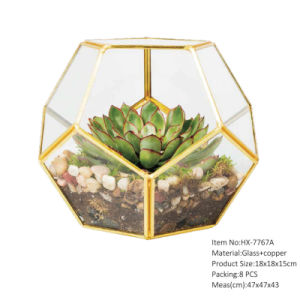 China Wholesale Glass Globe Hanging Terrarium Ornaments Design