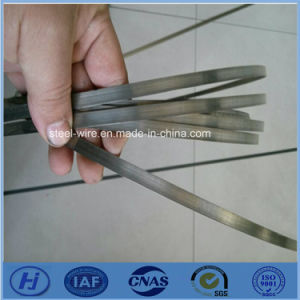 Incoloy 825 Uns N08825 W. Nr. 2.4858 High Percision Steel Strip pictures & photos