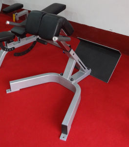 Newest Gym Equipment Back Extension (SD1028) pictures & photos