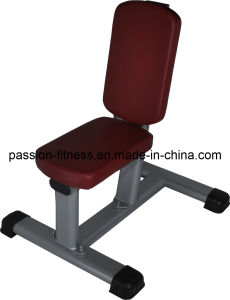 New Utility Bench Free Weight Commercial Fitness/Gym Equipment with SGS