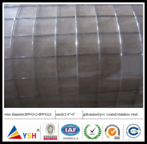 Super Quality Galvanized Welded Wire Mesh for Southeast Asia Market