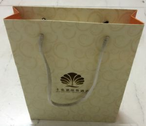 Hot Sale Paper Gift Bags for Promotional (FLP-8966)