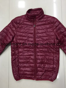 Stock Garments, Light Down Jackets, Cheaper Price Winter Jackets