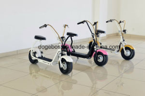 2017 Popular 1000W/ 1200W Two Wheel Stand up Electric Bike Citycoco Scooter
