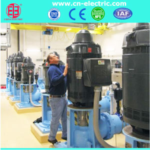 Vertical Hollow Shaft Motor for Deep Well Pump pictures & photos