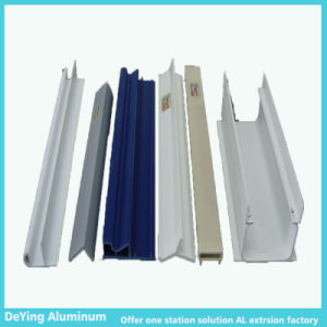 Aluminum Extrusion/Aluminium Profile with Excellence Surface Treatment