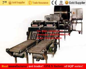 Pancake Machinery Food Machinery Injera Machine pictures & photos