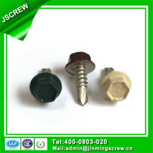 10# Painted Hot DIP Galvanized Hex Head Self Drilling Screw