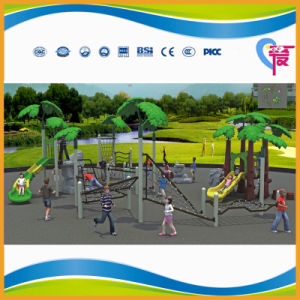 Ce Safe Climbing Outdoor Playground For Older Kids (A 15058)