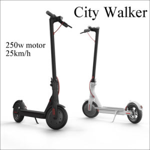 Stand Up Electric Scooter >> China Light Weight 2 Wheel Stand Up Electric Scooter 250w Disc Brake