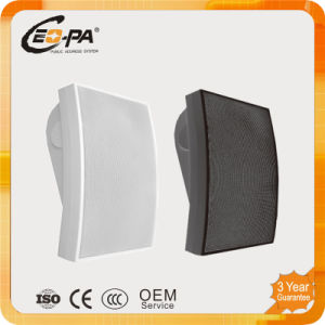 PA System Fashion Wall Mount Speaker (CE-60)