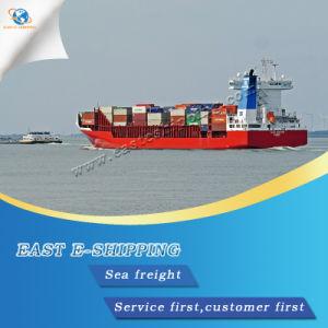 Wholesale Sea Shipping Service
