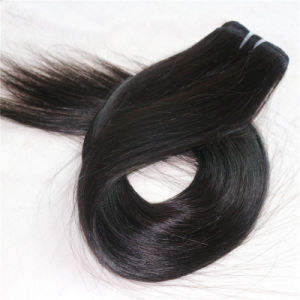 100% Human Hair Products Clip in Hair Extension pictures & photos