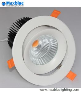 45W CREE COB LED Downlight with Brand Meanwell Driver pictures & photos