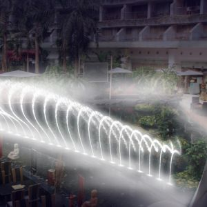 Music Water Dancing Fountain with Shooter