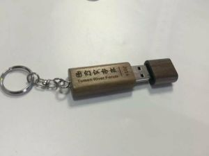 Wood USB Flash Drive, USB Flash Disk, USB Stick, USB Key, Memory Stick pictures & photos