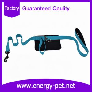 Functional Pet Product of Dog Leash and Car Belt