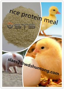 Rice Protein Meal for Animal Fodder with High Quality