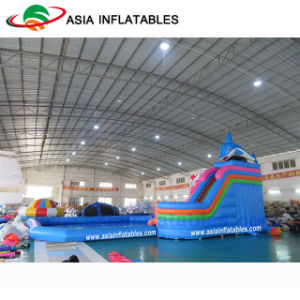 Inflatable Water Park, Inflatable Amusement Park, Inflatable Project Water Games pictures & photos