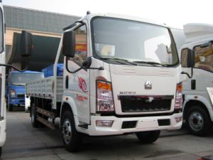 HOWO 4X2 3 Ton Light Truck pictures & photos