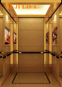 Elegant Appearance Passenger Elevator pictures & photos