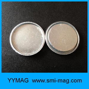 High Quality Rare Earth Magnet Neodymium Monopole Magnets pictures & photos