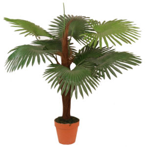 Natural Looking Artificial Palm Tree Plants