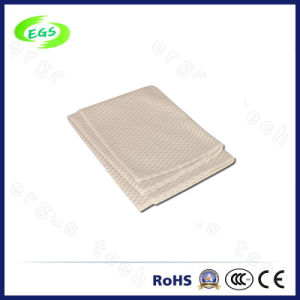 Polyester Dustlessness Cleanroom Wiper pictures & photos