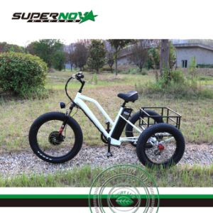 3 Wheel Electric Bicycle with Rear Cart pictures & photos