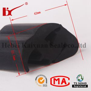 Co-Extrusion Automobile Windshield Rubber Seal pictures & photos