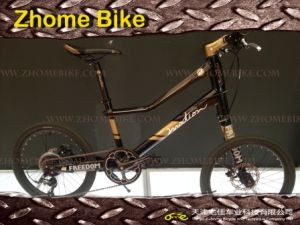Bicycles/Left Side Bicycle/Special Bicycle/Customerized Bike/Velo Bike Zh15zpz01