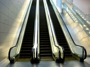 Isuzu Escalator pictures & photos