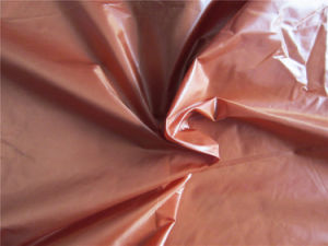 20d Nylon Taffeta Fabric for Down Coat (XSN009) pictures & photos