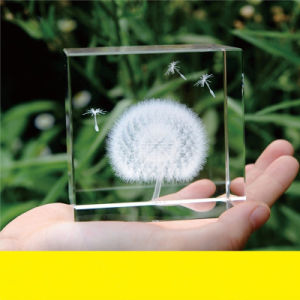 3D Laser Crystal Engraving Plant Paperweight for Souvenir (KS13583) pictures & photos