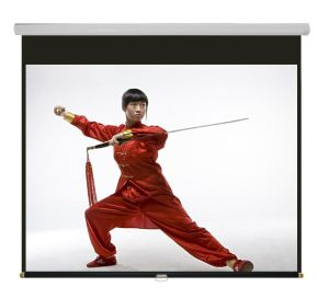 Manual Screen, Projector Screen with Competitive Prices pictures & photos