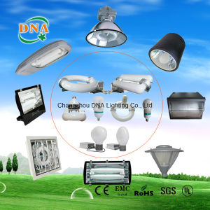Induction Light