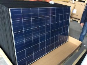 Solar Technology 250W Poly Solar Energy Panel for Japan Market pictures & photos