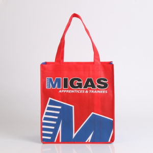 Wholesale Laminated Non Woven Bag with for Shopping (YYNWB095)