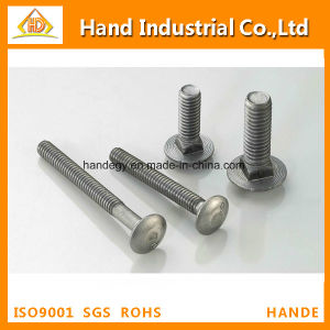 "Stainless Steel Top Quality Ss 304 5/16"" Guardrail Bolt pictures & photos"
