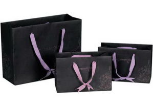 Black Colour High-Quality Matt Lamination Paper Carrier Bags with Ribbon (YY-B0098) pictures & photos