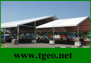 Outdoor Tent Without Sidewall (TGEO3212)