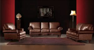 Classical Luxury Sectional Leather Sofa (L072)