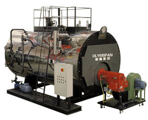 Wns Oil Fired Steam Generator Boiler pictures & photos